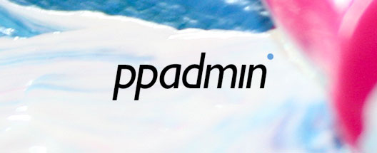 ppadmin Logo - Professional Page Administration
